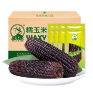 Northeast Peasant Madame Black waxy corn (东北农嫂 黑玉米)